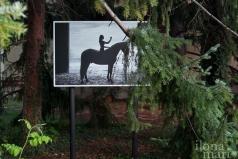 Equus von Emanuele Scorcelletti im Doblhoffpark vor dem Hotel Schloss Weikersdorf beim Photo Festival La Gacilly Baden