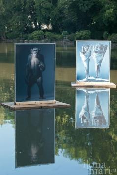 """""""Menschlich, allzu menschlich"""" von Tim Flach im Doblhoffteich beim Photo Festival La Gacilly Baden"""