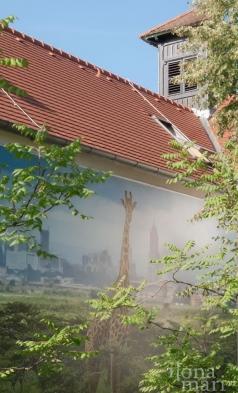 """""""Nairobi - im Dschungel der Großstadt"""" von Paras Chandaria beim Photo Festival La Gacilly Baden"""