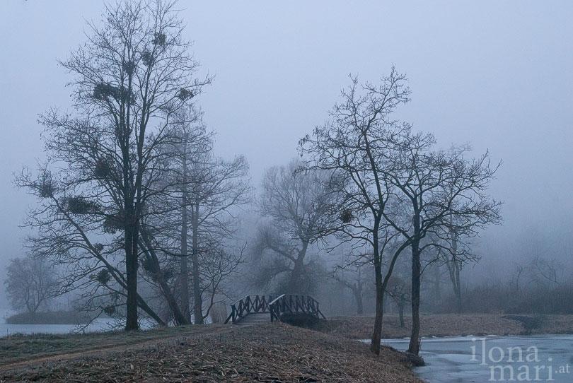 Morgenstimmung in der Teichlandschaft von Sárvár