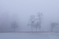 winterliche Teichlandschaft in Sárvár