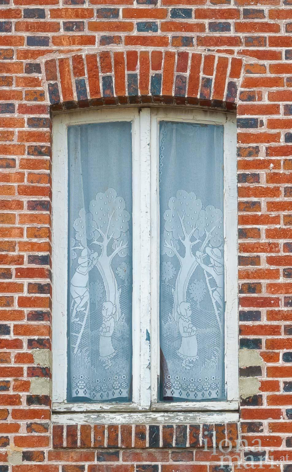 Gardine in einem alten Haus von Beuvron-en-Auge, in der Normandie